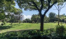 天王寺动物园-大阪-小小呆60