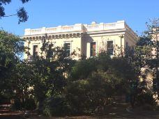 皇家植物园-悉尼-yangduoduo17