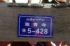 亚青寺-白玉-格格巴