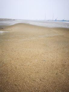 滨州贝壳堤岛-无棣-欣悦看景