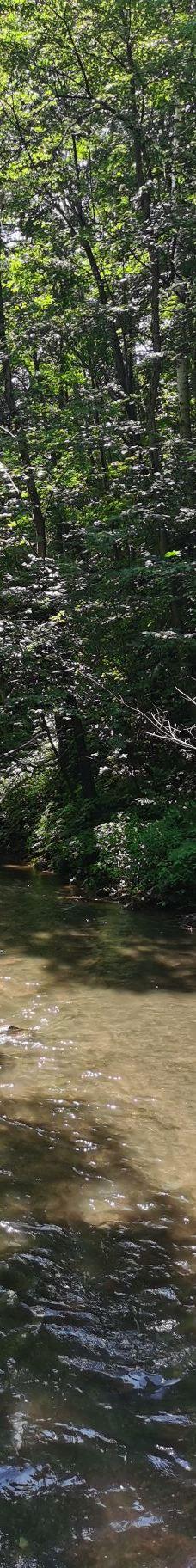吉林龙湾群国家森林公园-辉南