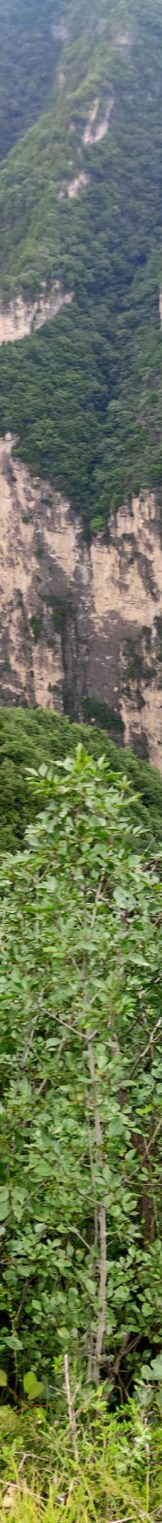 太行山大峡谷-壶关