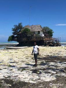 Zanzibar taxi driver excursion-桑给巴尔石头城