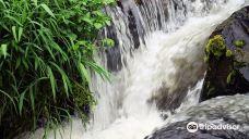 Sabie Waterfalls-萨比