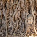 Ayutthaya Day Tour from Bangkok: Bang Pa-In Summer Palace, Wat Mahathat and more