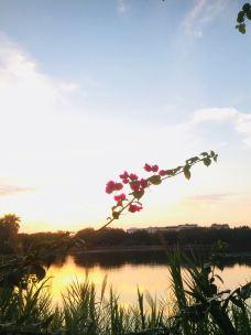 剑英公园-梅州-M14****496