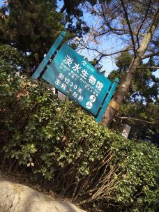 淡水生物馆-青岛-1食肉兔纸73