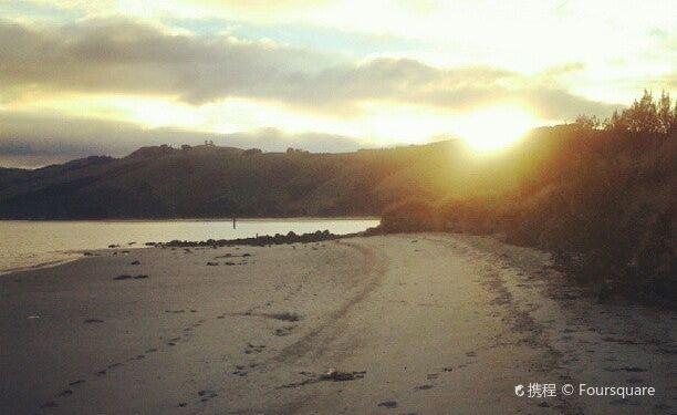 Dunedin City图片