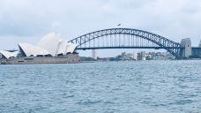 麦考利夫人座椅-悉尼-水儿Doris