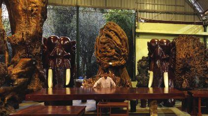 勐巴娜西珍奇園 (8)