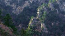 通天河国家森林公园-凤县-doris圈圈