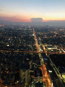 阿倍野HARUKAS摩天大楼-大阪-懒的吱声