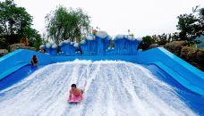 滑板冲浪-杭州