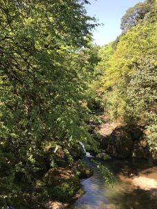 龙苍沟叠翠溪景区-荥经-大风过后阿斯顿法国