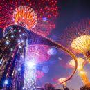 新加坡濱海灣花園+魚尾獅+小印度+哈芝巷+牛車水+夜間動物園&燈光秀一日遊(臻享包車遊)