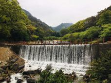 福州国家森林公园-福州-真诚7577