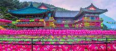 三光寺-釜山-doris圈圈