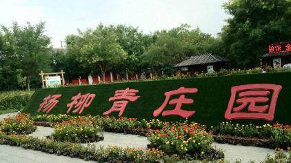 杨柳青庄园 (1)