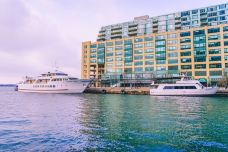 Mariposa Cruises-多伦多-卡卡卡卡卡布奇诺