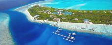 神仙珊瑚岛-神仙珊瑚岛-qq菲