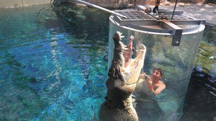 可可洛思鳄鱼湾主题公园7