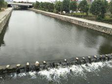 白河湿地公园-新野-M23****3109