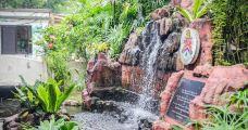 吉隆坡飞禽公园-吉隆坡-小小呆60