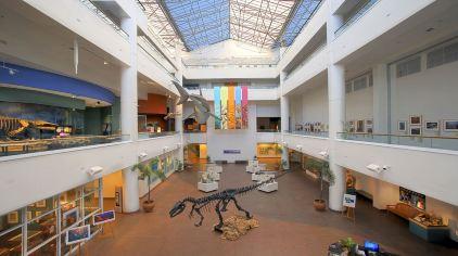 圣地亚哥自然历史博物馆4