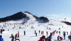 日照浮来青滑雪场-浮来青滑雪场-日照-mayq_qi