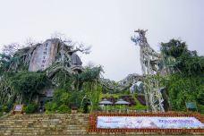 云南野生动物园-昆明-莱泽诺乾隆