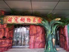 萌宠动物乐园-济南-AIian