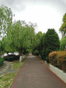 白河湿地公园-新野-wind3757