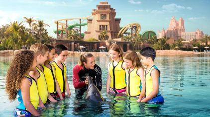 亚特兰蒂斯海豚湾 dolphin bay (9)