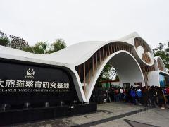 成都撩大熊猫3日游