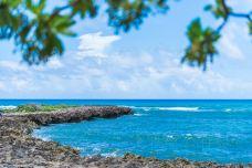绿龟海滩-夏威夷-C_image