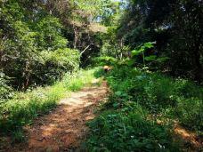 镇山国家森林公园-蕉岭-滇国剑客