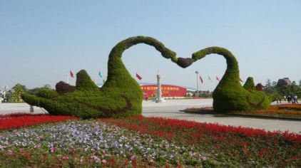 鄢陵花博园 (8)