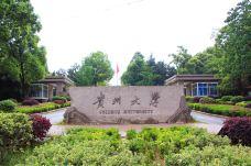 IMG_4534-贵州大学-贵阳-汤瑞强