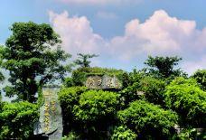 湖光岩-湛江-doris圈圈