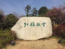 遗爱湖-黄冈-_WB3****602
