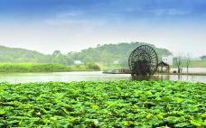 杏花村文化旅游区-池州-doris圈圈
