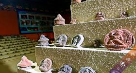 拉萨维巴村藏式民俗乡直通车(藏民家访+泥塑博物馆)