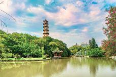 江心公园-温州-doris圈圈
