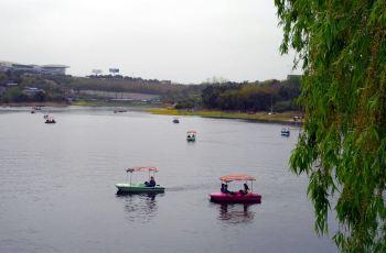 绵阳南湖附近景点,南湖周边景点攻略 指南