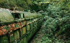 亚细亚号废弃火车车厢-杭州-M25****7169