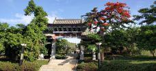 德惠市植物园-德惠-滇国剑客