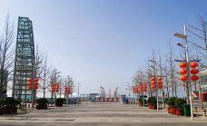 百丽广场-青岛-大足熊猫