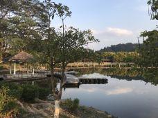 西湖公园-大埔-118****782