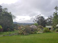 Glenfalloch Woodland Gardens-Dunedin City