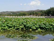 晚霞湖国家水利风景区-陇南-_CFT01****9975248